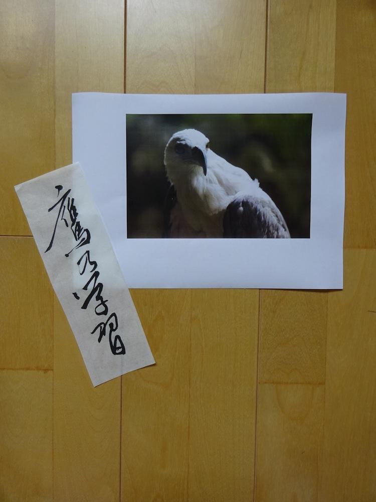 33鷹乃学習0717-0721s